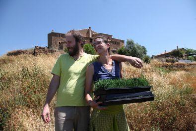clorofeeling-experiencia-wheatgrass