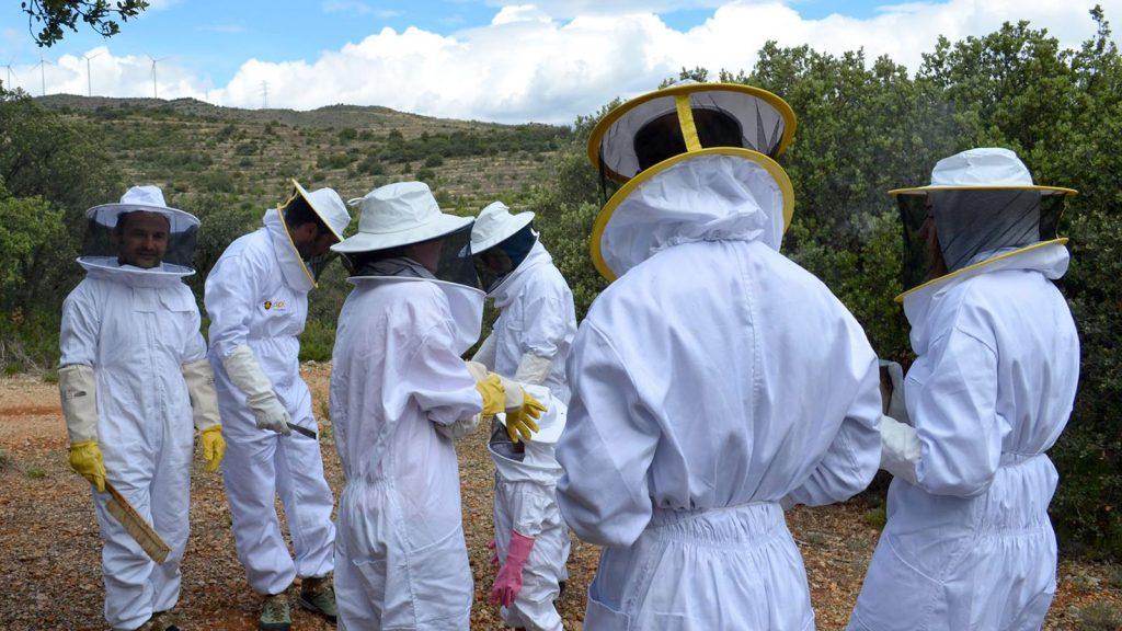 Descubriendo la apicultura en Villores