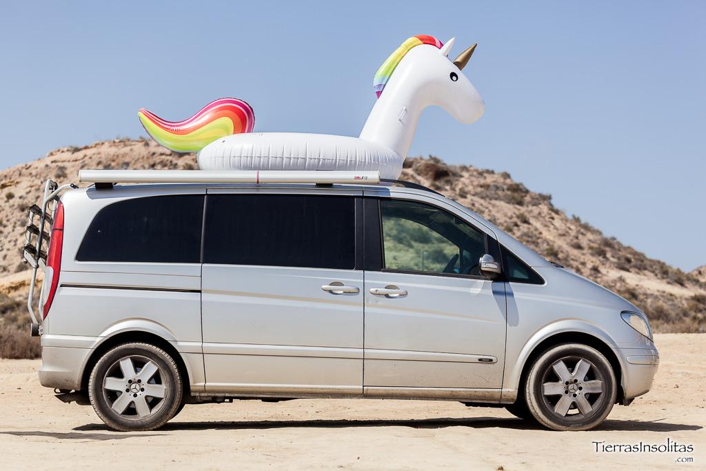 El unicorniovan en Murcia